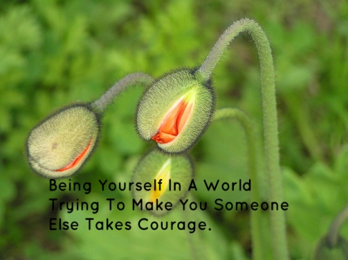 being-yourself-in-a-world-trying-to-make-you-someone-else-takes-courage
