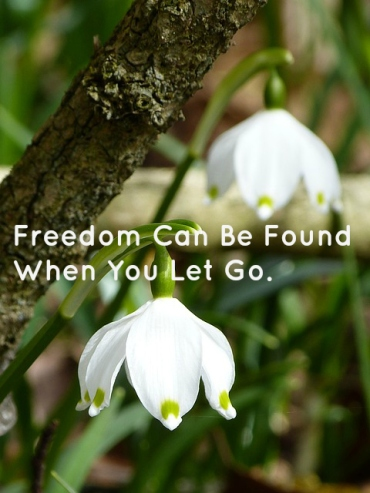 freedom-can-be-found-when-you-let-go