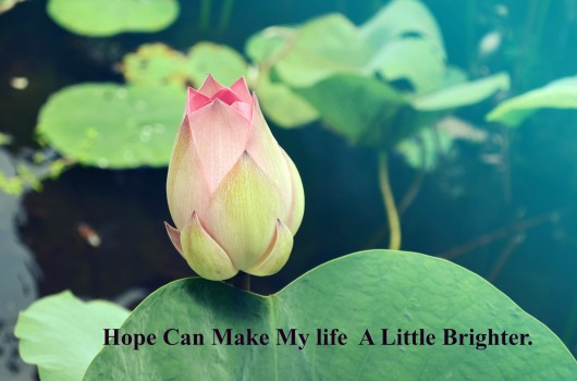 hope-can-make-my-life-a-little-brighter