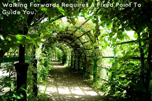 walking-forwards-requires-a-fixed-point-to-guide-you