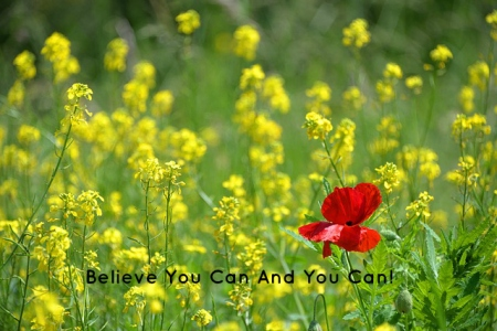 believe-you-can-and-you-can