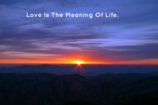 love-is-the-meaning-of-life
