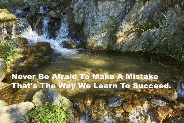 Never Be Afraid To Make A Mistake That's The Way We Learn To Succeed.