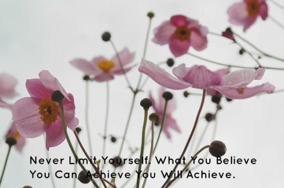 Never limit Yourself. What You Believe You Can Achieve You Will Achieve.