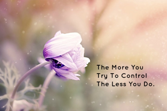 The More You Try To Control The Less You Do.
