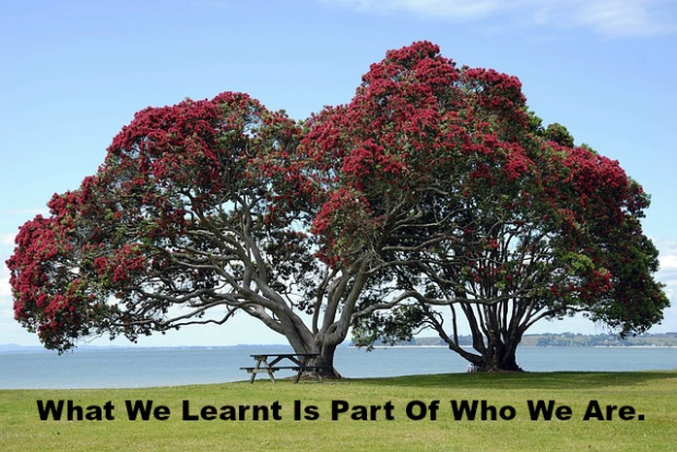 What We Learnt Is Part Of Who We Are.