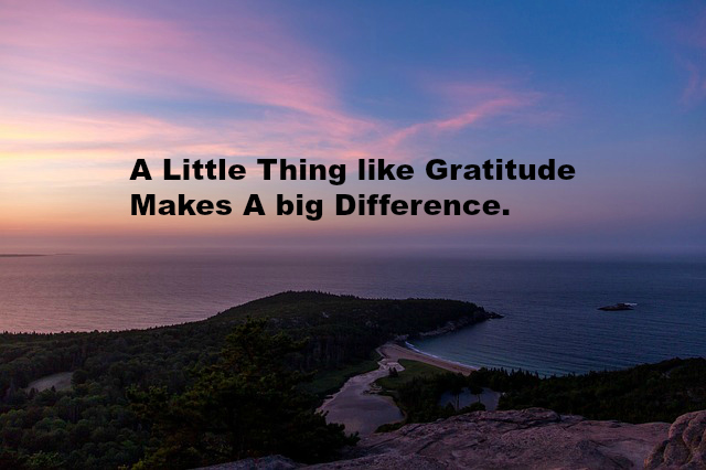 A Little Thing like Gratitude Makes A big Difference.