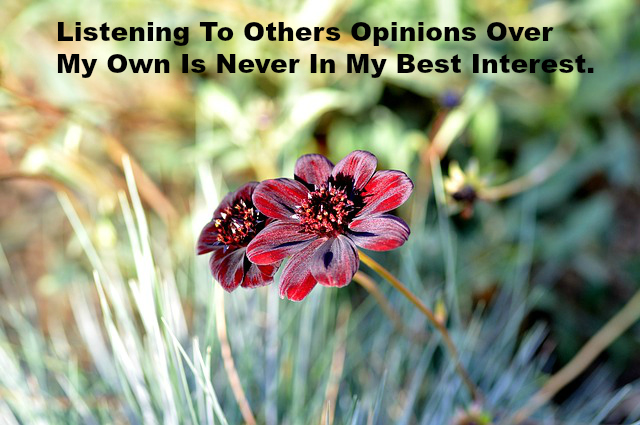Listening To Others Opinions Over My Own Is Never In My Best Interest.