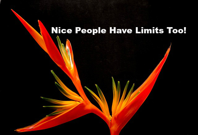 Nice People Have Limits Too!