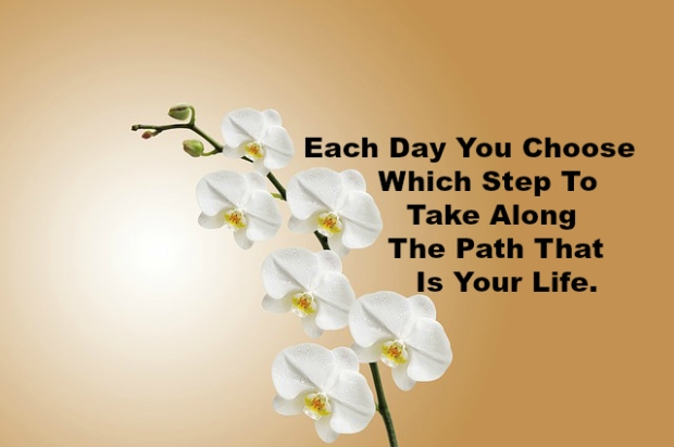 Each Day You Choose Which Step To Take Along The Path That Is Your Life.