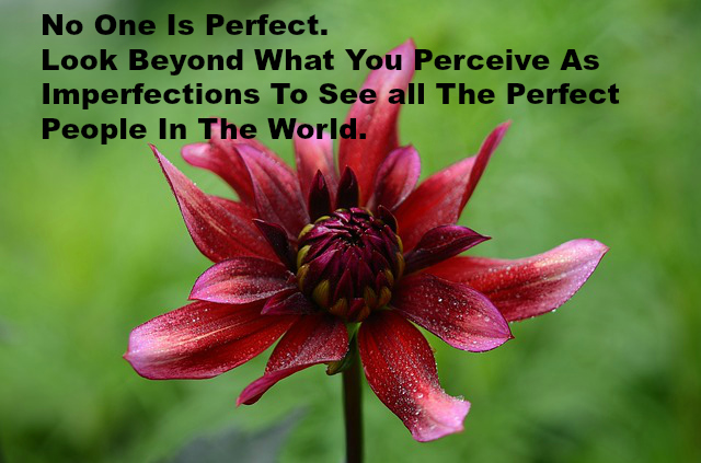 No One Is Perfect. Look Beyond What You Perceive As Imperfections To See all The Perfect People In The World.