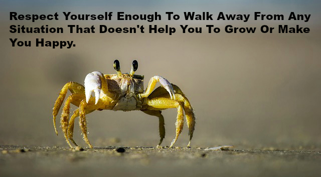 Respect Yourself Enough To Walk Away From Any Situation That Doesn't Help You To Grow Or Make You Happy.