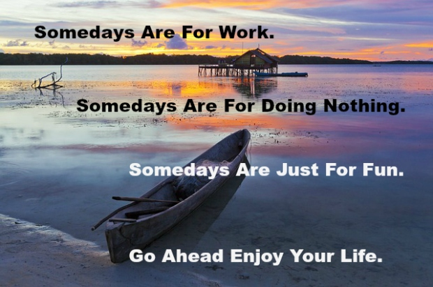 Somedays Are For Work. Somedays Are For Doing Nothing. Somedays Are Just For Fun. Go Ahead Enjoy Your Life.