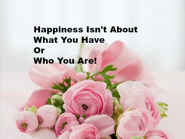 Happiness Isn't About What You Have Or Who You Are.