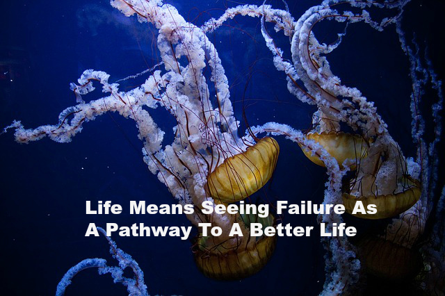 Life Means Seeing Failure As A Pathway To A Better Life