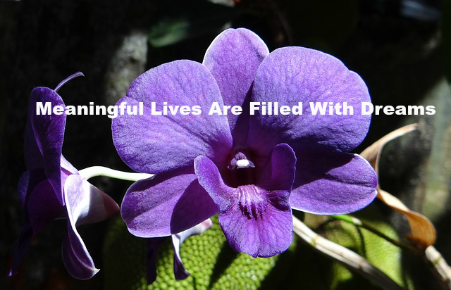 Meaningful Lives Are Filled With Dreams