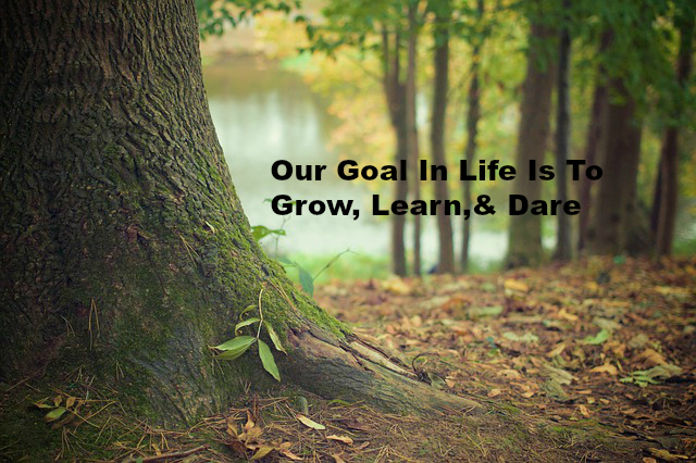 Our Goal In Life Is To Grow, Learn,& Dare